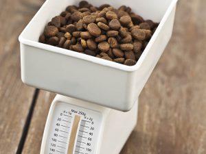 Trockenfutter aufbewahren und abwiegen