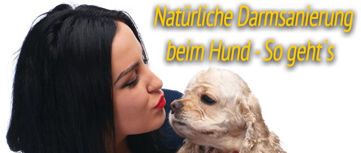 Natürliche Darmsanierung beim Hund