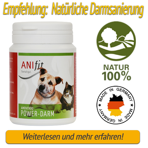 Anifit Power-Darm Hundefutter