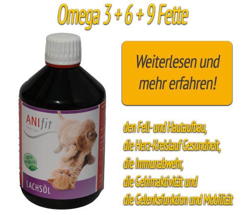 Lachsöl für Omega 3 + 6 +9