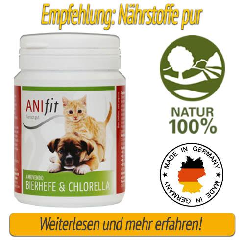 Nährstoffe für den Hund - Bierhefe und Chlorella