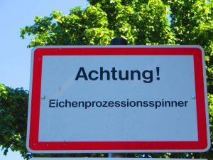 Schild Achtung Eichenprozessionsspinner