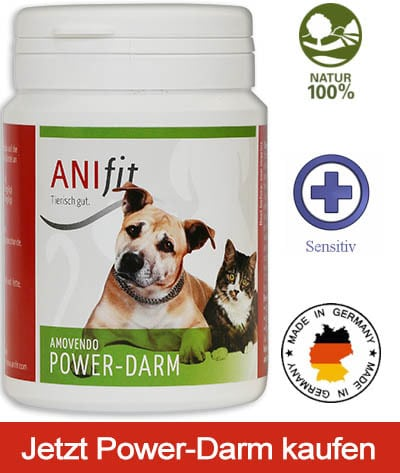 Anifit Power-Darm