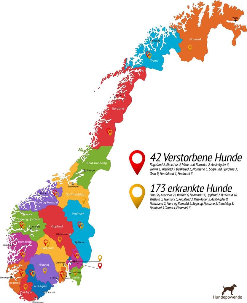 Hundekrankheit In Norwegen