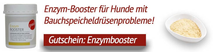 Enzym-Booster Anifit
