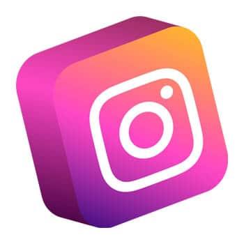 Bei Instagram als Petfluencer Geld verdienen
